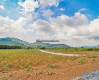 REF# LS86 - LAND FOR SALE IN BANG SARAY CLOSE TO 332 ROAD