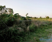 REF# LS88 - 4 RAI 63 SQ.W LAND FOR SALE IN BANG SARAY