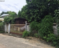 Land For Sale Suksun Viphawadee 58